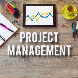 web-project-management